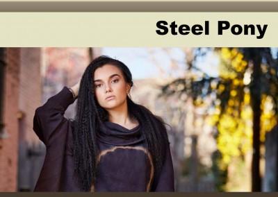 Steel Pony